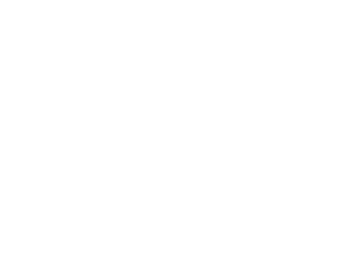 Repatriation in South America